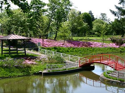 金比羅公園の写真
